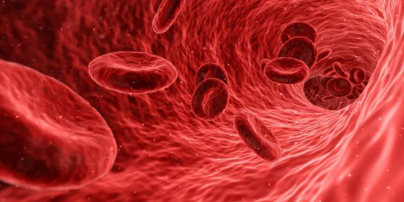 Study reinforces benefits of long-term duel antiplatelet therapy for ACS patients